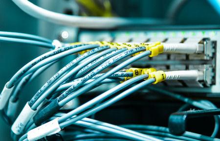 Torgos networks